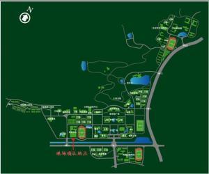 南京师范大学2011年报考点现场确认流程及注意事项